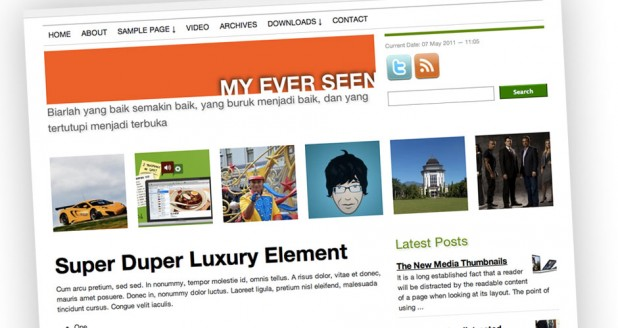 Widodo WP Theme Feature