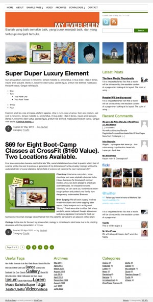 Widodo WordPress Theme Screenshot