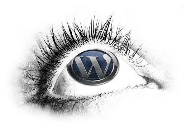 choosing a simple theme for adsense wordpress themes plugins